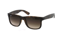 Ray-Ban Justin RB 4165 710/13 Sonnenbrille in rubber light havana
