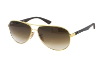 Ray-Ban Carbon Fibre RB 8313 001/51 Sonnenbrille in arista